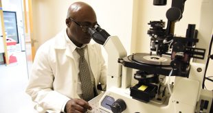 faculty member using a microscope
