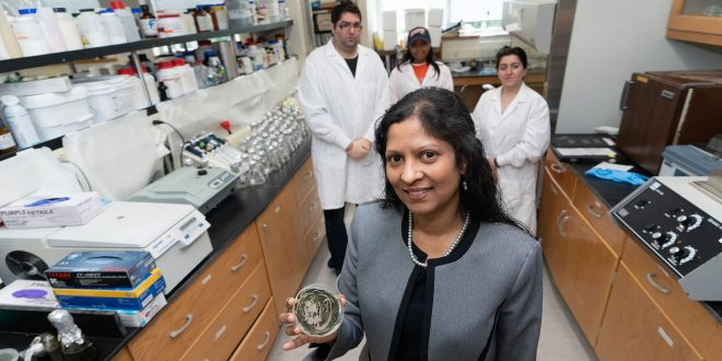 Morgan Professor Receives Innovation Award for Research in STEM